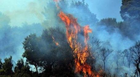 Φωτιά ξέσπασε στη Χασιά – Σπεύδουν ισχυρές πυροσβεστικές δυνάμεις
