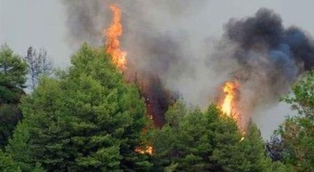 Σε ύφεση η πυρκαγιά σε ορεινή περιοχή του Δήμου Καντάνου-Σελίνου