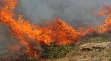 Πυρκαγιά σε ξερά χόρτα στη Νέα Ευκαρπία