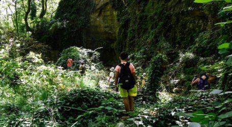 Αίσιο τέλος στην περιπέτεια 19 εκδρομέων που χάθηκαν σε δασική περιοχή της Νάουσας