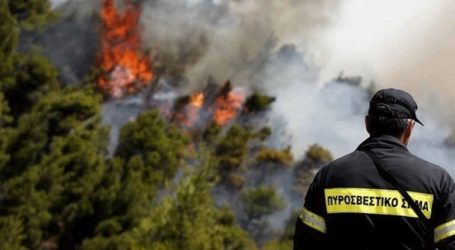 Συνολικά 45 δασικές πυρκαγιές εκδηλώθηκαν το τελευταίο 24ωρο