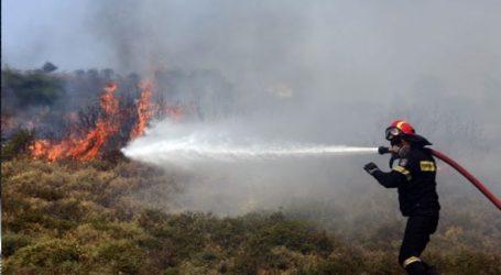 Πυρκαγιά σε δασική έκταση στο Κορωπί