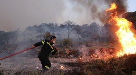 Σε ύφεση η φωτιά στην περιοχή Δροσιά της Αχαΐας