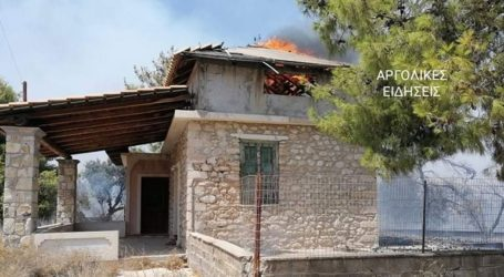 Αργολίδα: Φωτιά στο Δορούφι Ερμιονίδας