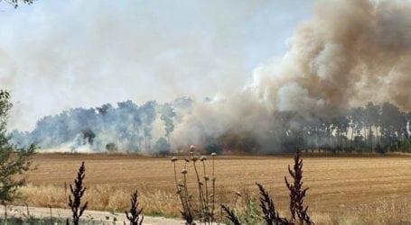 Υπό έλεγχο η φωτιά δίπλα από το ΤΕΙ της Λάρισας – Δείτε φωτογραφίες