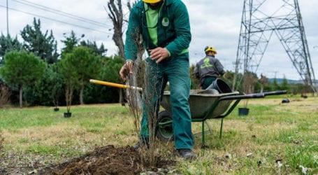 Περιφέρεια Θεσσαλίας: Ολοκλήρωση προγράμματος Νέων Αγροτών