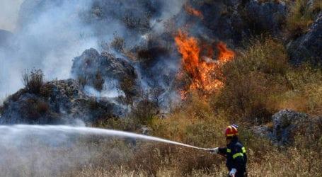 ΤΩΡΑ: Φωτιά στην Πέρδικα Αλμυρού