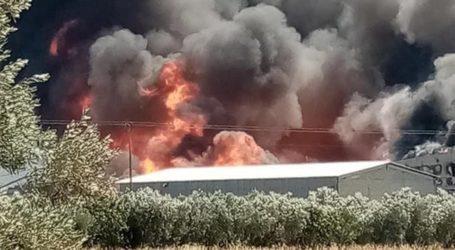 Ζαγορά: Τυλίχθηκε στις φλόγες αποθήκη με κυψέλες