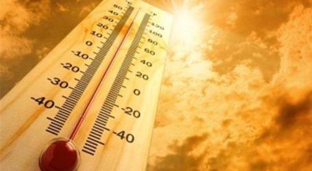 Ο δήμος Φαρσάλων για τις πολύ υψηλές θερμοκρασίες στην περιοχή – Τι πρέπει να προσέχουμε