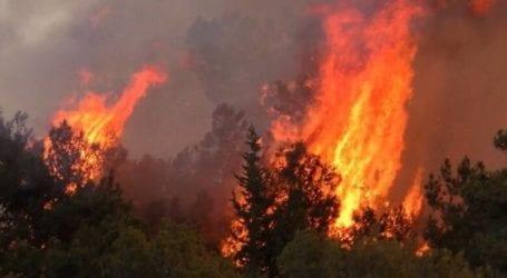 Πώς να περιορίσουμε τον κίνδυνο των δασικών πυρκαγιών