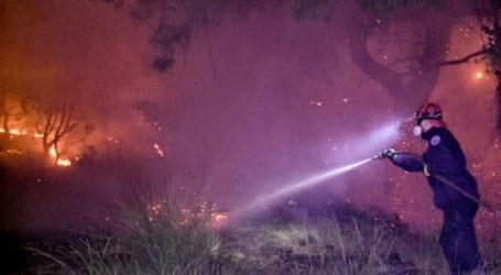 Λάρισα: Συνεχίζεται η μάχη με τις φλόγες στο Δίλοφο Φαρσάλων – Πυρκαγιά και στον Κέδρο Καρδίτσας