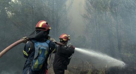 Ελασσόνα: Πρόστιμο σε πολίτη για πρόκληση πυρκαγιάς την Παρασκευή στην περιοχή της Συκέας