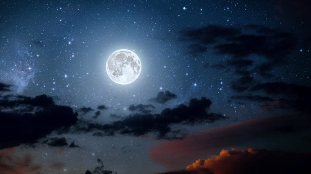 selini feggari moon