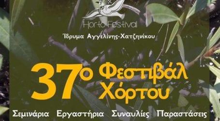 37ο Φεστιβάλ Χόρτου – Το φετινό πρόγραμμα