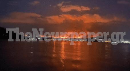 Η Μαγνησία κλαίει για την Εύβοια – Δείτε εικόνες από τη συγκλονιστική φωτιά