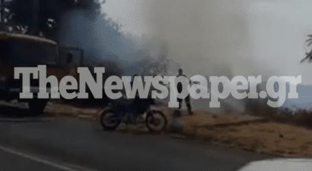 Φωτιά αναστάτωσε το Πήλιο – Άμεση παρέμβαση πολιτών και πυροσβεστών [εικόνες]