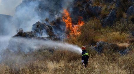 Πολιτική Προστασία: Υψηλός ο κίνδυνος πυρκαγιάς και σήμερα στη Δυτ. Μαγνησία και τις Β. Σποράδες [γράφημα]