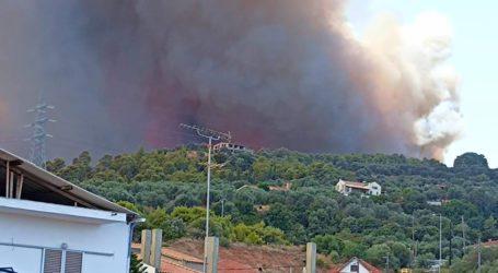 Μαγνησία: Πολύ υψηλός ο κίνδυνος πυρκαγιάς – Δείτε τις οδηγίες προστασίας