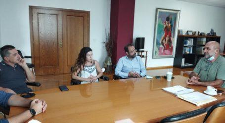 Συνεργασία Μαραβέγια με Χατζηκυριάκο και «Olivetto Magnes» για τη διάκριση της ελιάς της νοτιοδυτικής Μαγνησίας
