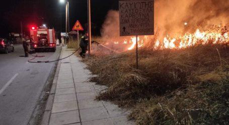 Φωτιά στον περιφερειακό δρόμο του Βόλου [εικόνες]