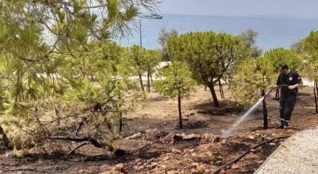Πυρκαγιά στο Καβούρι Αττικής