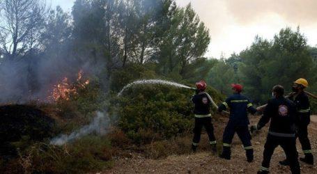 Μάχη με τις αναζωπυρώσεις δίνουν πυροσβέστες και εθελοντές