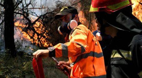 Οριοθετήθηκε η φωτιά στην περιοχή Αγράμπελα των Καλαβρύτων