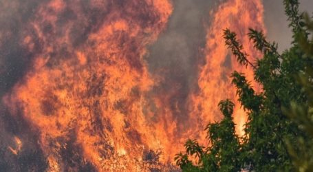 Δύσκολη η κατάσταση με τη φωτιά στη Μέλπεια Μεσσηνίας