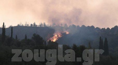 Μάχη για τον περιορισμό της φωτιάς στην Αρχαία Ολυμπία