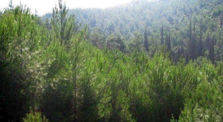 Απαγόρευση κυκλοφορίας σε δασικές περιοχές και περιαστικά άλση της Δυτικής Μακεδονίας