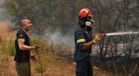 Πολύ υψηλός ο κίνδυνος πυρκαγιάς το Σάββατο για Ηράκλειο και Λασίθι