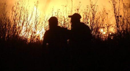 Ιωάννινα: Πυρκαγιά στο Μιτσικέλι