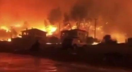 Συγκλονιστικό βίντεο με τις φλόγες να έχουν φτάσει στα Βασιλικά Ευβοίας
