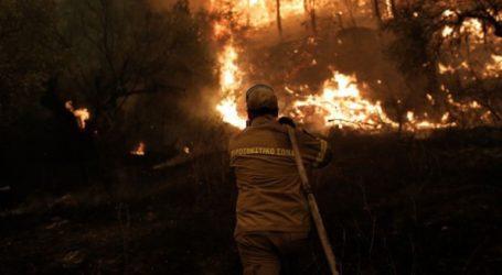 Σε πλήρη εξέλιξη η φωτιά στην περιοχή Μουζουρά