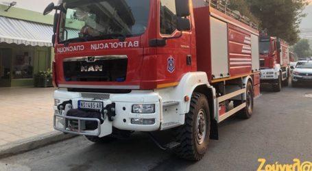 Σέρβοι πυροσβέστες στα μέτωπα της φωτιάς στην Εύβοια