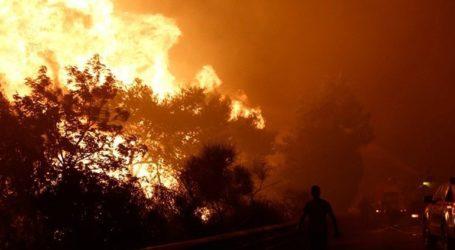 Συνεχίζεται η μάχη με τις φλόγες στην Ανατολική Μάνη