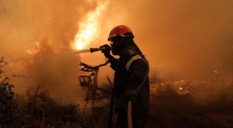 Αντιμέτωπες με αναζωπυρώσεις οι πυροσβεστικές δυνάμεις στην Ηλεία
