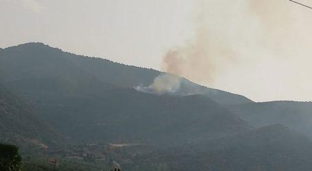 Πυρκαγιά στην Αταλάντη – Προκλήθηκε από κεραυνούς