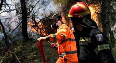 Φωτιά στο Καστέλι, κοντά στο αεροδρόμιο της Πολεμικής Αεροπορίας