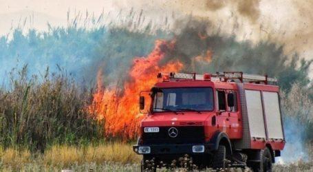 Υπό μερικό έλεγχο τέθηκε η φωτιά σε δασική έκταση στον Παρθενώνα Χαλκιδικής
