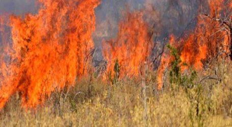 Πολύ υψηλός κίνδυνος πυρκαγιάς το Σάββατο σε τέσσερις περιοχές