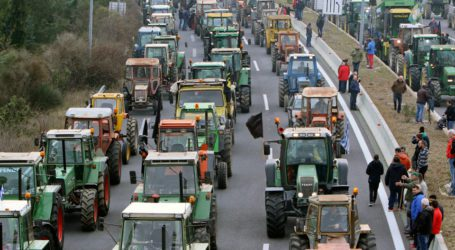 Αγροτικός Σύλλογος Ζαγοράς: «Δεν μας αποζημιώνει ο ΕΛΓΑ – Σε επαγρύπνηση για το επόμενο διάστημα»