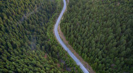 Μαγνησία: Απαγόρευση κυκλοφορίας σε δάση έως τις 3 Σεπτεμβρίου