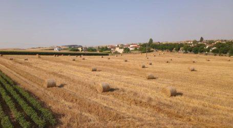 Λάρισα: Συγκεντρώνουν βοήθεια στην Τερψιθέα για τους πυρόπληκτους κτηνοτρόφους της Εύβοιας