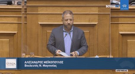 Μεϊκόπουλος:«Οι μεγάλες προσδοκίες για τα ζώα συντροφιάς διαψεύστηκαν από ένα λίγο νομοσχέδιο»
