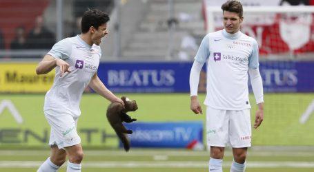 Ο νέος μεταγραφικός στόχος της ΑΕΚ είχε… κυνηγήσει κουνάβι στο γήπεδο