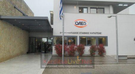 Περιμένει το προσωπικό για να λειτουργήσει, ο βρεφονηπιακός του ΟΑΕΔ στην Καρδίτσα