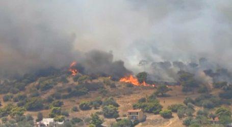 Ροδόπη – Φωτιά σε αγροτοδασική έκταση – Επιχειρούν και εναέρια μέσα