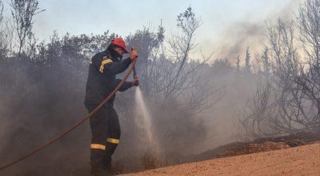 Φωτιά στην Ηλεία – Καίει δασική έκταση σε δύσβατη περιοχή