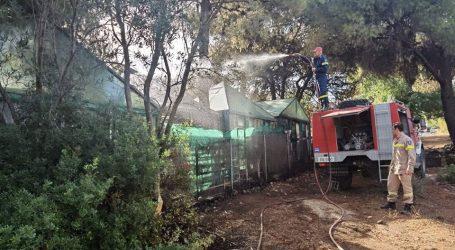 Δήμαρχος Μαραθώνα: Ευχαριστώ όσους συνέβαλλαν στη κατάσβεση της πυρκαγιάς